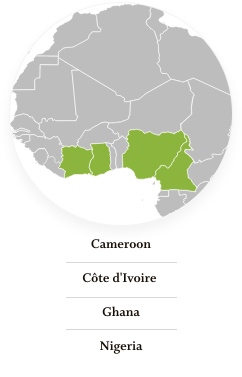 Cameroon, Côte d'Ivoire, Ghana, Nigeria