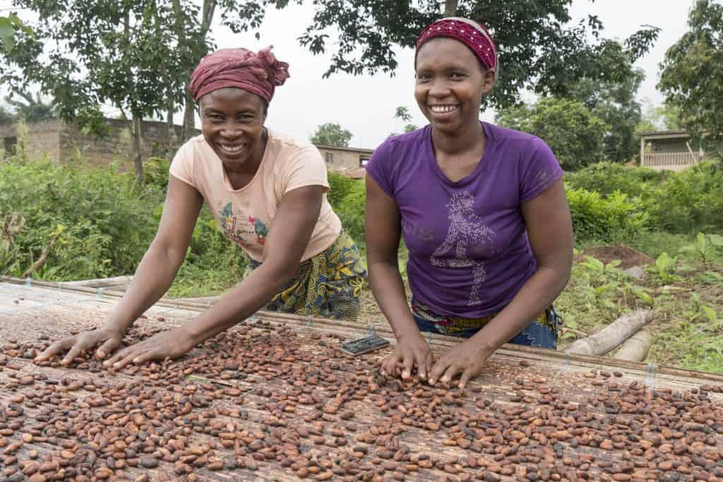 Sustainability, cocoa sustainability, sustainable cocoa, why is sustainability important, sustainability defined, sustainability movement, cocoa plant, cocoa bean, cacao, raw cacao, prosperous farmers, women in cocoa