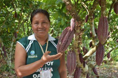 Peru Cacao Alliance, 2018