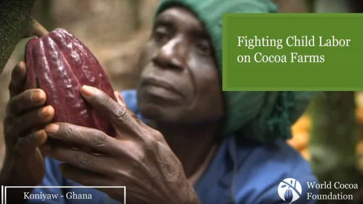 Video still of cocoa farmer interview about child labor in Ghana