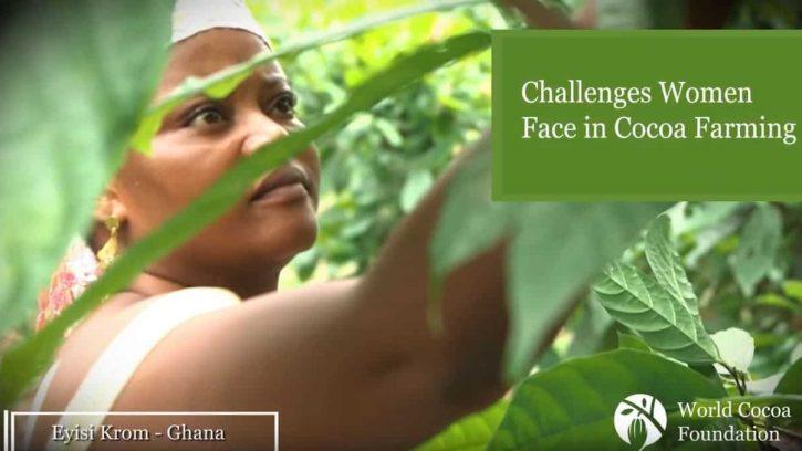 Video still of cocoa farmer interview in Ghana