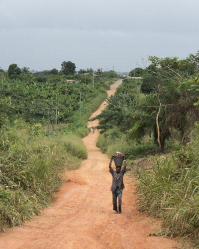 Sustainability, cocoa sustainability, sustainable cocoa, why is sustainability important, sustainability defined, sustainability movement, cocoa plant, cocoa bean, cacao, raw cacao
