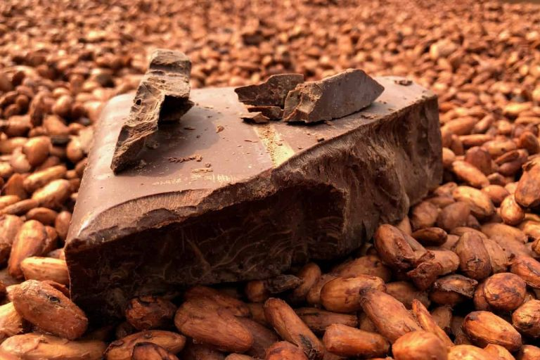 Tree to bar sustainable chocoalte on top of cocoa beans
