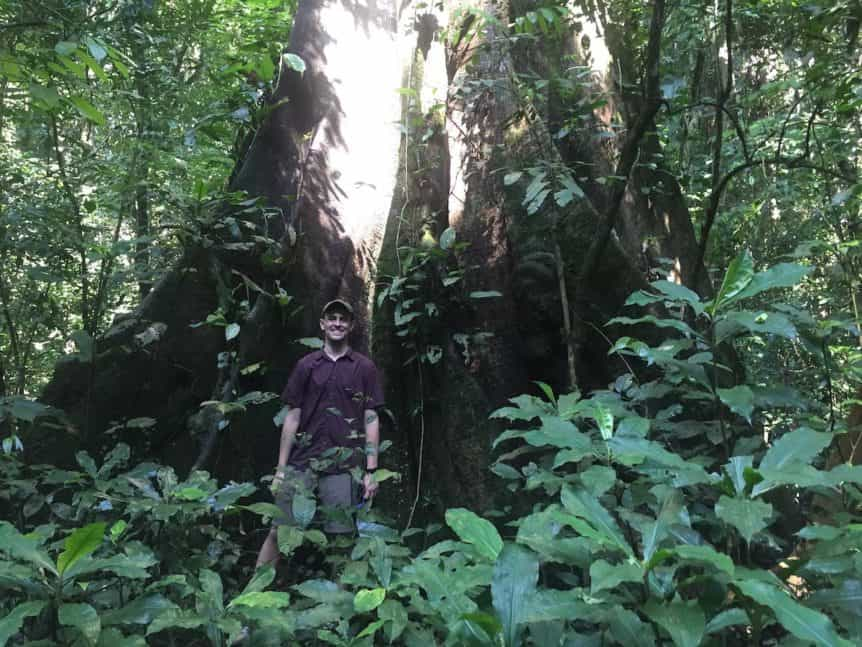WCF land tenure fellow stands by tree in Cote d'Ivoire forest