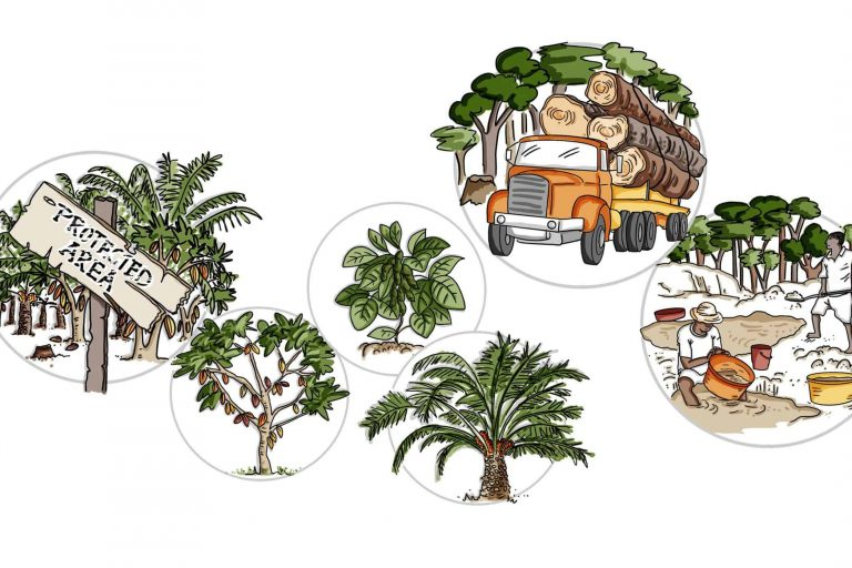 Deforestation animation