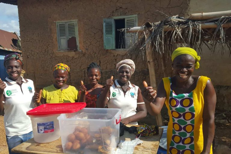 Empowered women cocoa farmers in Wamase, Ghana