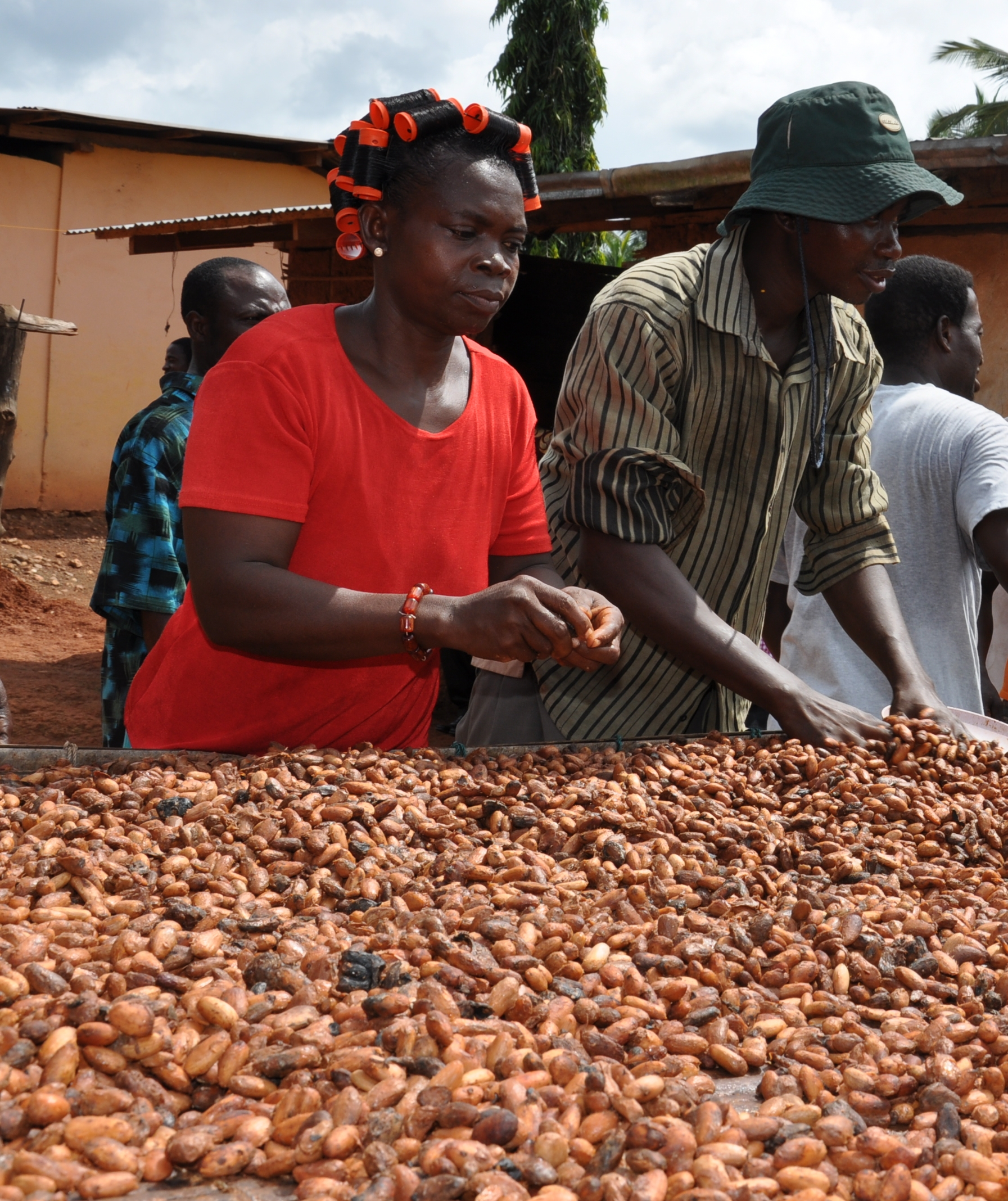 Filling the gender gap in the cocoa sector