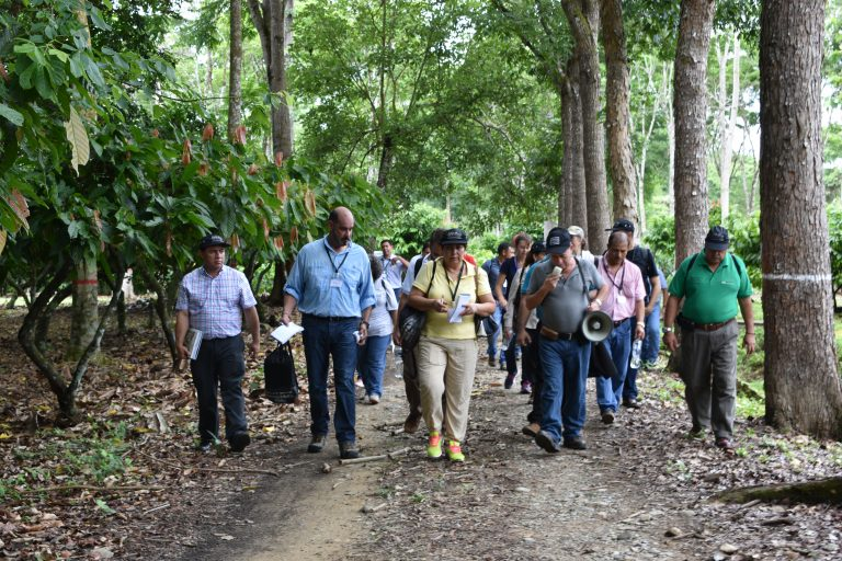 Climate Smart Cocoa Learning Journeys