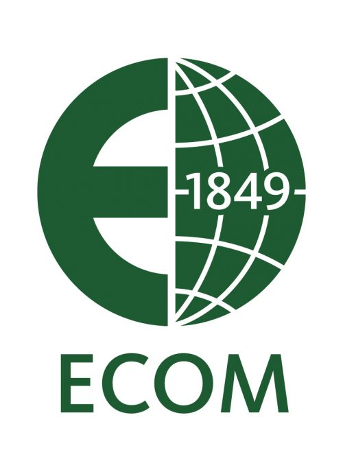 Ecom Sustainability, cocoa sustainability, sustainable cocoa, why is sustainability important, sustainability defined, sustainability movement, cocoa plant, cocoa bean, cacao, raw cacao, deforestation, what is deforestation