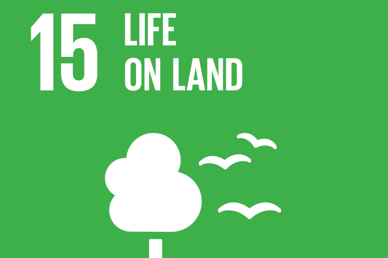 United Nations Sustainable Development Goal 15: Life on Land