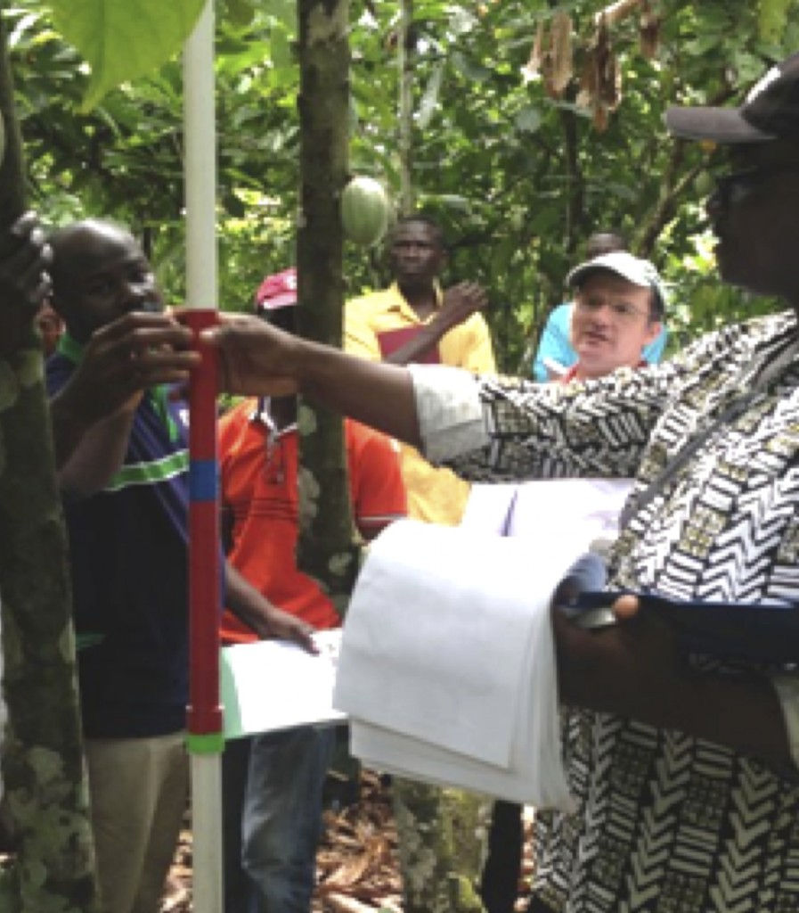WCF's Monitoring and Evaluation Coordinator, Edwin Afari, demonstrates inexpensive farm practices survey techniques to cocoa experts.