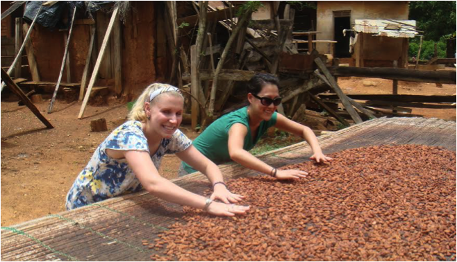 GWU students, Caroline Bailey and Ashley Hutchins, helping farmers to dry cocoa seeds. (Picture by William Gyasi)