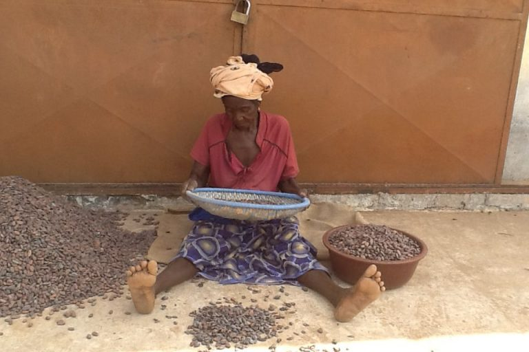 Women 3 – Lady Sorting Beans
