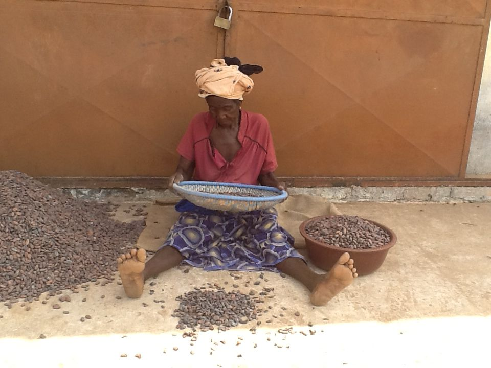 Women 3 - Lady Sorting Beans